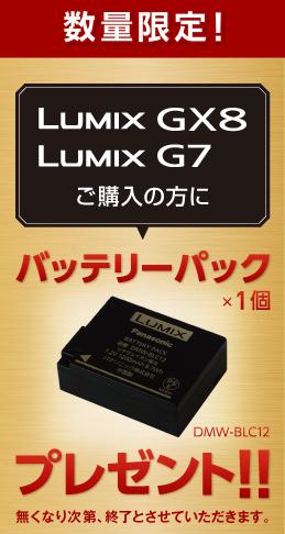 GX8 G7バッテリープレゼント