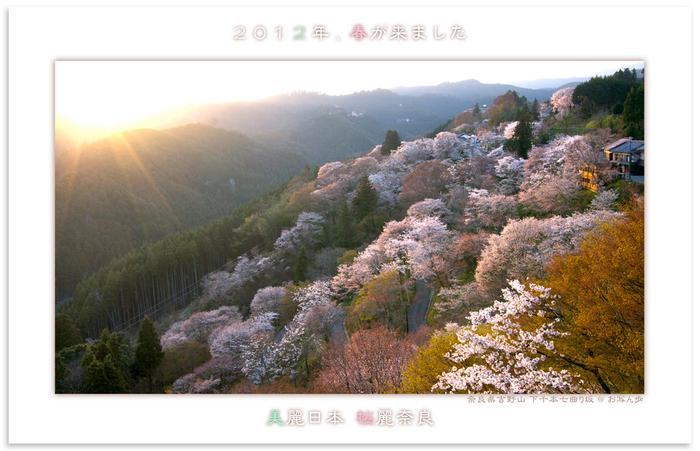 吉野山・下千本_2012.jpg