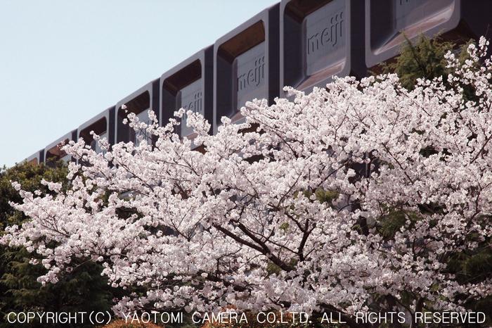 明治製菓大阪工場巨大チョコレート看板_yaotomi_1.jpg