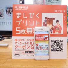 PC290125,2016yaotomi.jpg