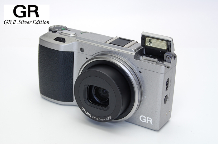 GRII-SILVER-004.jpg