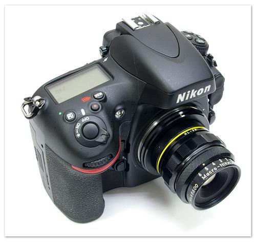 macro-nikkor-65mm-005.jpg
