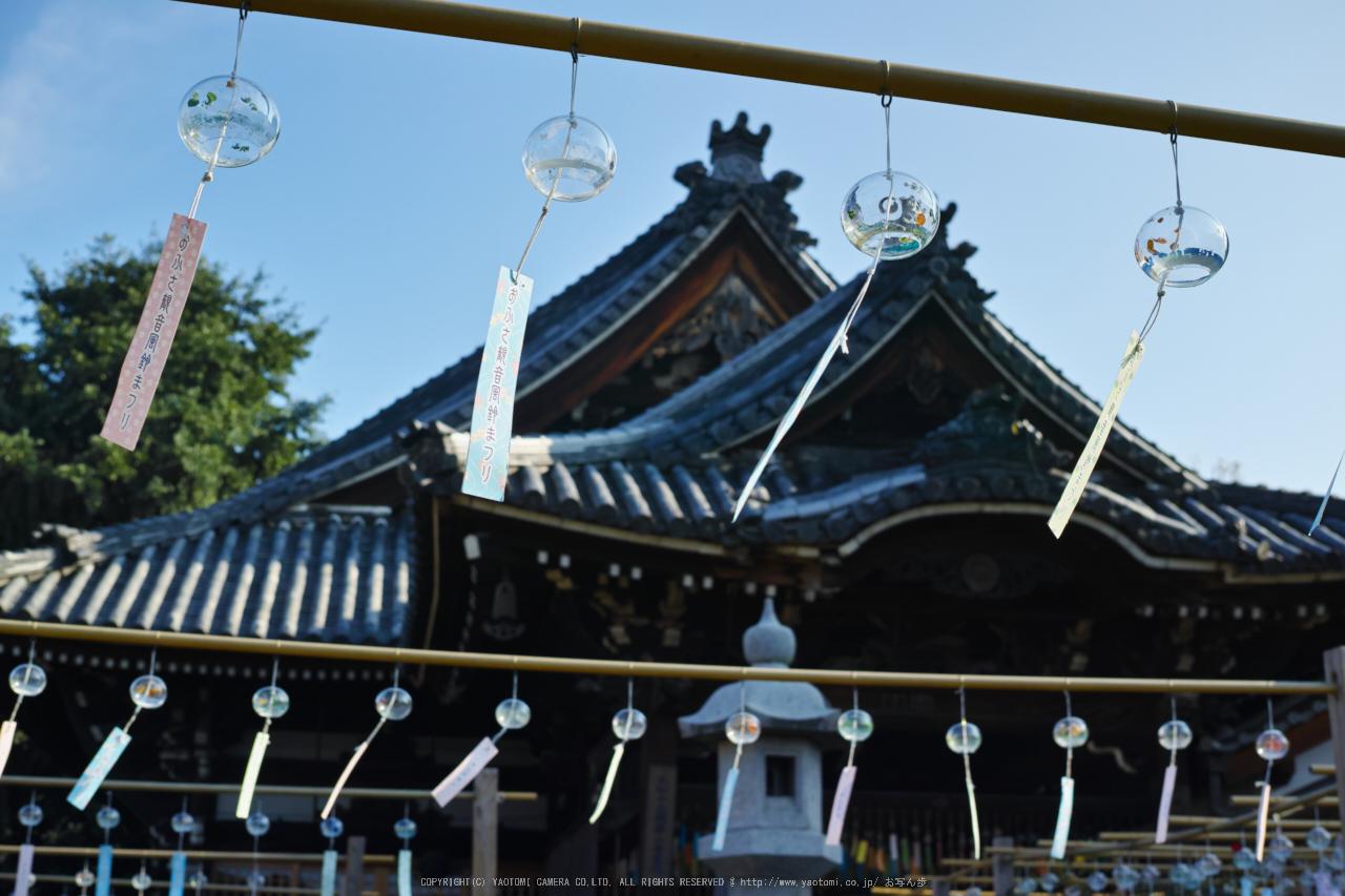http://www.yaotomi.co.jp/blog/walk/%E3%81%8A%E3%81%B5%E3%81%95%E8%A6%B3%E9%9F%B3%2C%E9%A2%A8%E9%88%B4%E3%81%BE%E3%81%A4%E3%82%8A%28SDIM0351%2CF5%2Cdp2%292014yaotomi_.jpg
