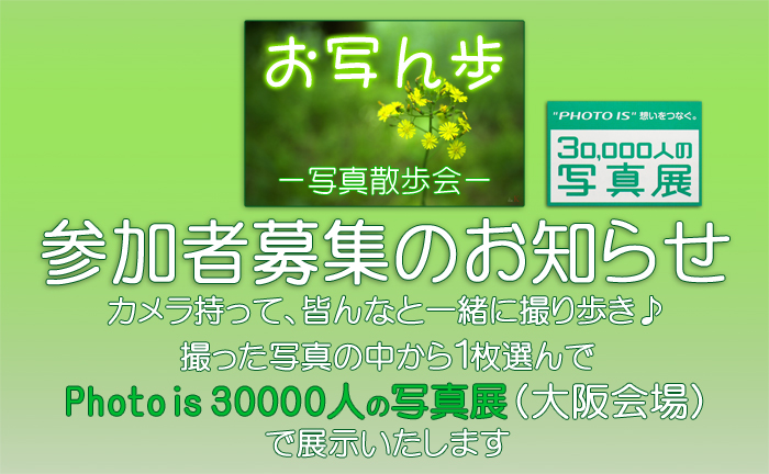http://www.yaotomi.co.jp/blog/walk/%E3%81%8A%E5%86%99%E3%82%93%E6%AD%A9%E6%98%8E%E6%97%A5%E9%A6%99_%E3%83%96%E3%83%AD%E3%82%B0.jpg