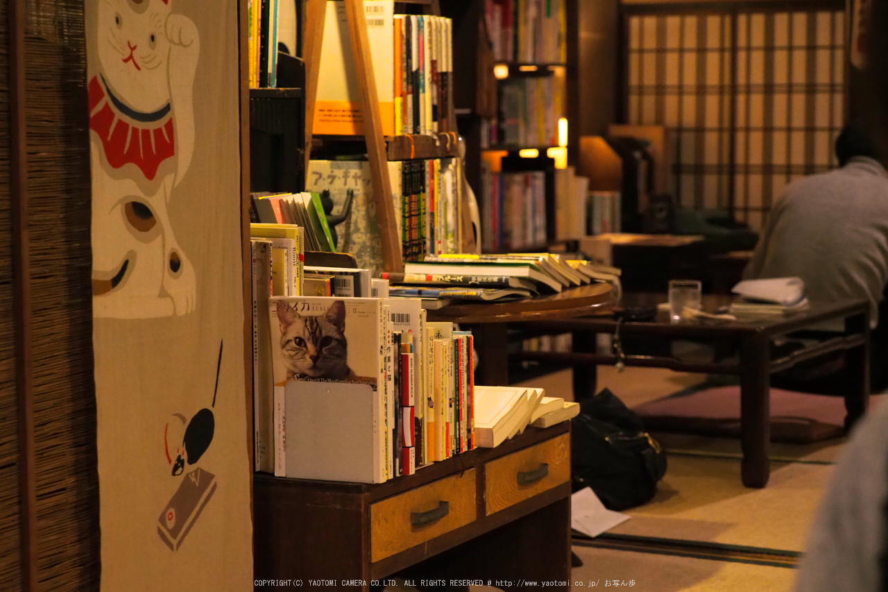 http://www.yaotomi.co.jp/blog/walk/%E3%81%93%E3%81%A8%E3%81%B0%E3%81%AE%E3%81%AF%E3%81%8A%E3%81%A8%28PB300302%2C40%20mm%2CF3.2%2Ciso3200%292016yaotomi.jpg
