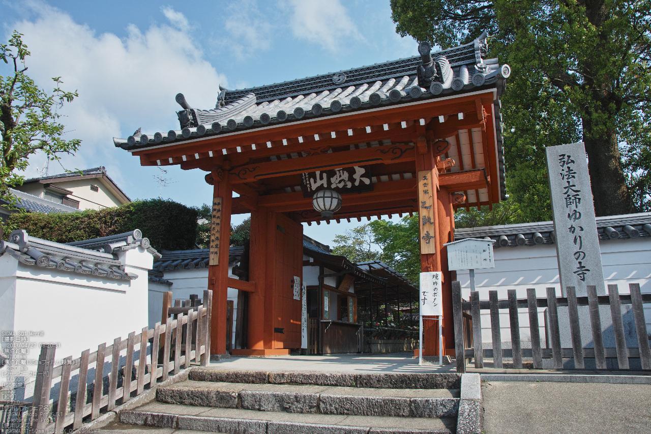 http://www.yaotomi.co.jp/blog/walk/%E4%B9%99%E8%A8%93%E5%AF%BA%E3%81%AE%E7%89%A1%E4%B8%B9_2013yaotomi_2s.jpg