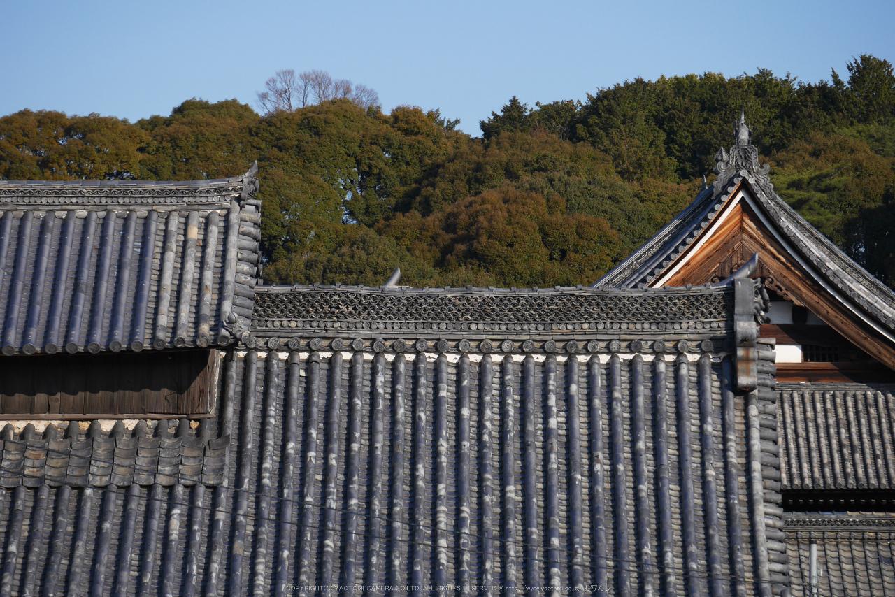 http://www.yaotomi.co.jp/blog/walk/%E4%BA%AC%E9%83%BD%2C%E8%90%AC%E7%A6%8F%E5%AF%BA%2C%E5%86%AC%28P1000100%2C88%20mm%2Cf-5.6%2CGF7%292015yaotomi_.jpg