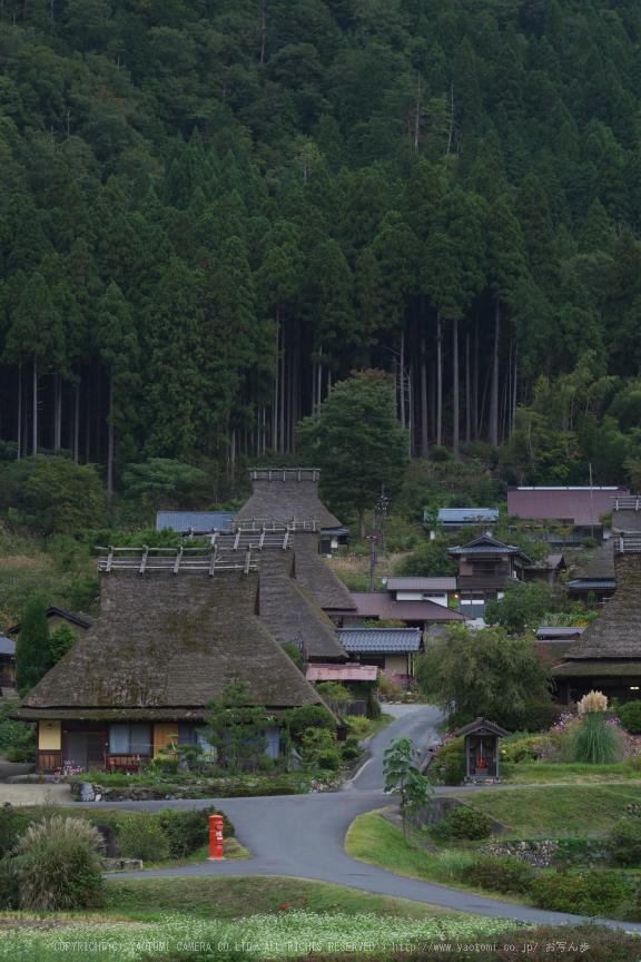 京都美山,かやぶきの里,そば(IMGP0906,70mm,F8,KS1)2014yaotomi_.jpg