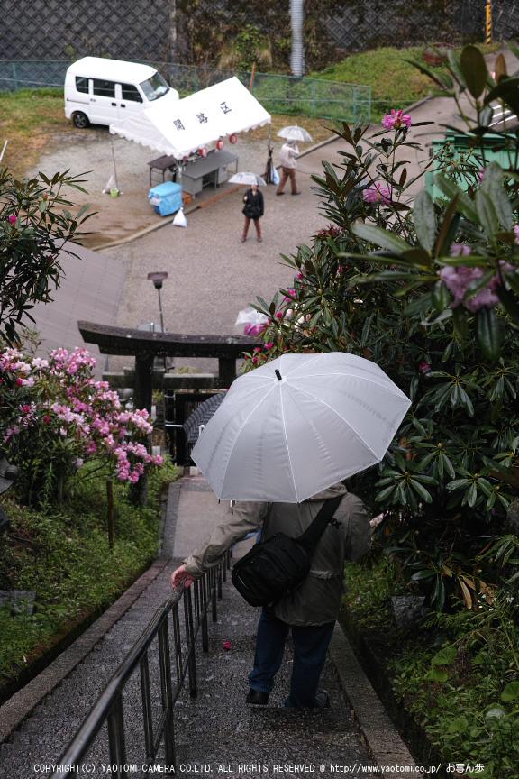 写真散歩会・お写ん歩_20130511yaotomi_32s.jpg