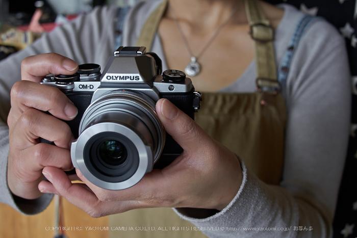 北野天満宮,梅(OMD_EM10,14-43-00,20mm,F3.2,iso125)2014yaotomi_ (1) .jpg