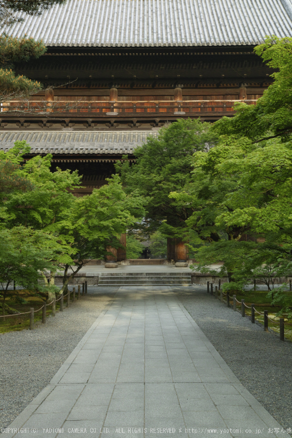 南禅寺,新緑(SDIM0052,35mm,F6.3)2014yaotomi_.jpg