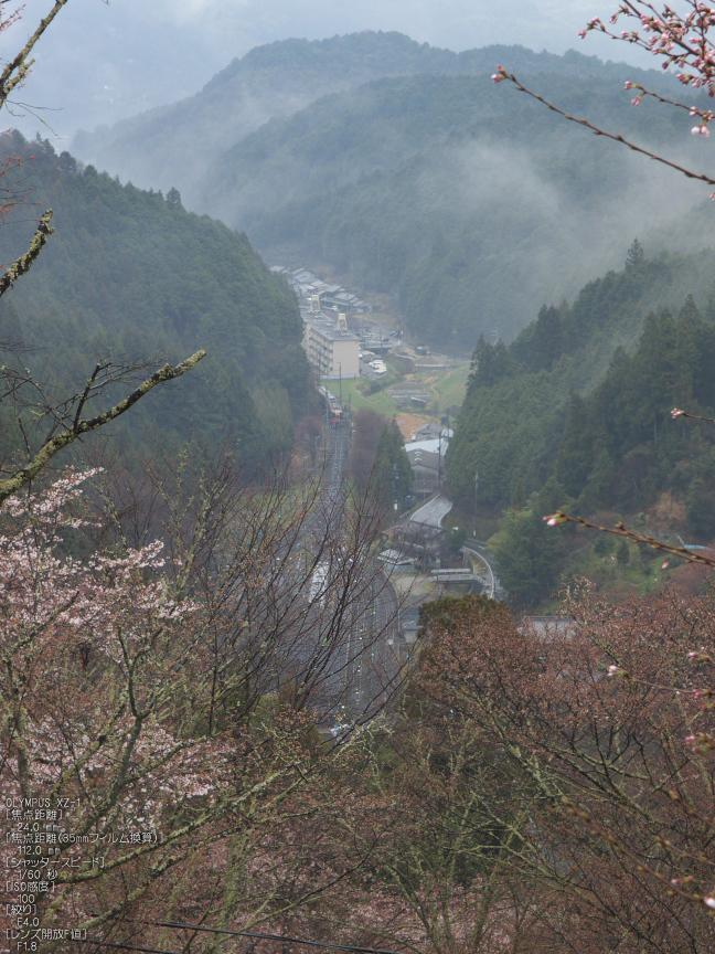 吉野山_桜_その1_2012_yaotomi_6.jpg