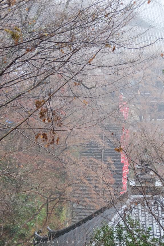 大和七福八宝めぐり,長谷寺_DSCF0240(Cap,25.6mm,F4.9,iso100,XQ1)2014yaotomi.jpg