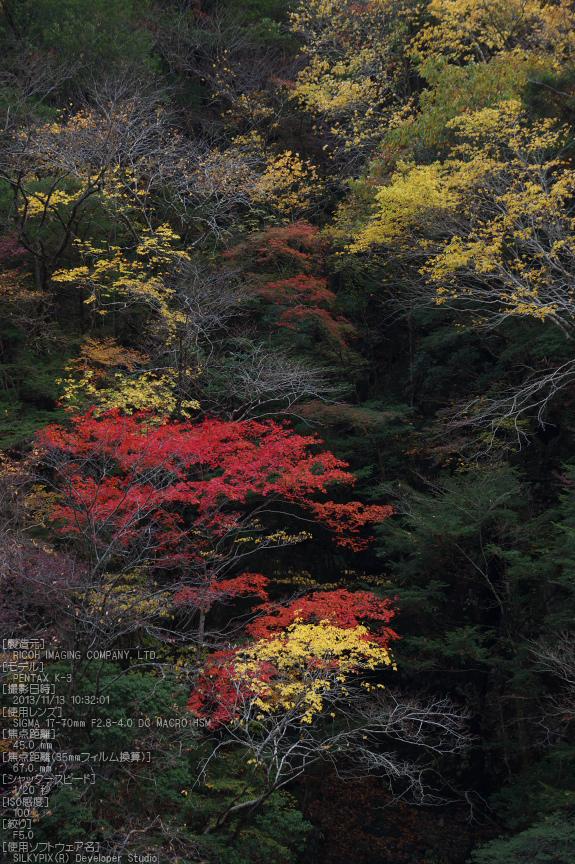 天川,天ノ川渓谷,紅葉(PENTAX-K3)_2013yaotomi_60s.jpg