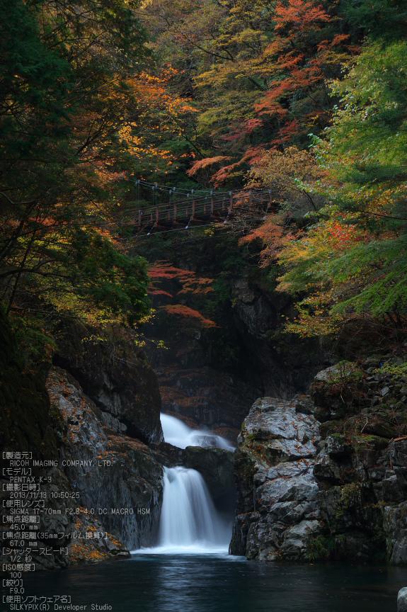 天川,天ノ川渓谷,紅葉(PENTAX-K3)_2013yaotomi_63s.jpg