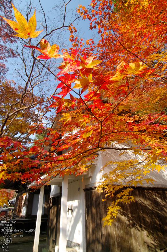 室生寺・紅葉_2011_34.jpg
