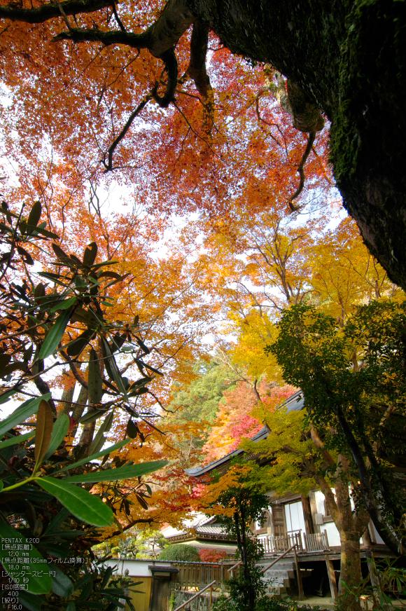 室生寺・紅葉_2011_40.jpg
