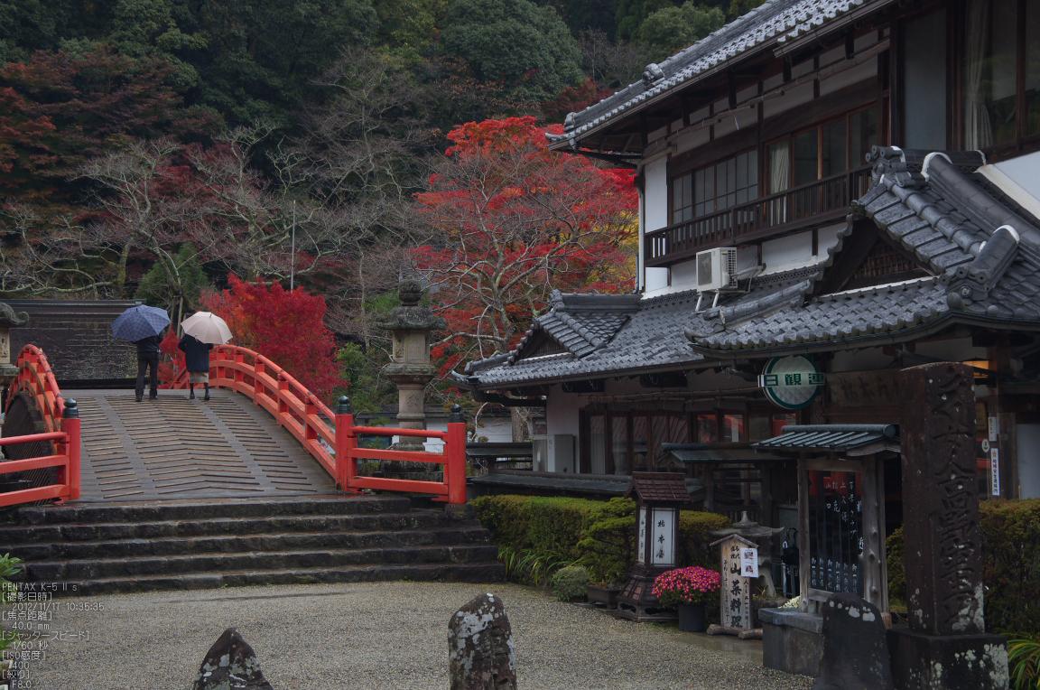 http://www.yaotomi.co.jp/blog/walk/%E5%AE%A4%E7%94%9F%E5%AF%BA_%E7%B4%85%E8%91%892012_yaotomi_50s.jpg