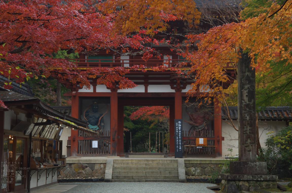 http://www.yaotomi.co.jp/blog/walk/%E5%AE%A4%E7%94%9F%E5%AF%BA_%E7%B4%85%E8%91%892012_yaotomi_5s.jpg