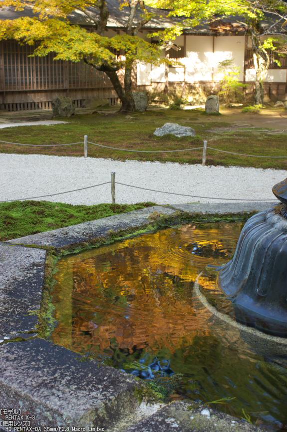 比叡山延暦寺(浄土院),紅葉(PENTAX-K3)_2013yaotomi_8s.jpg