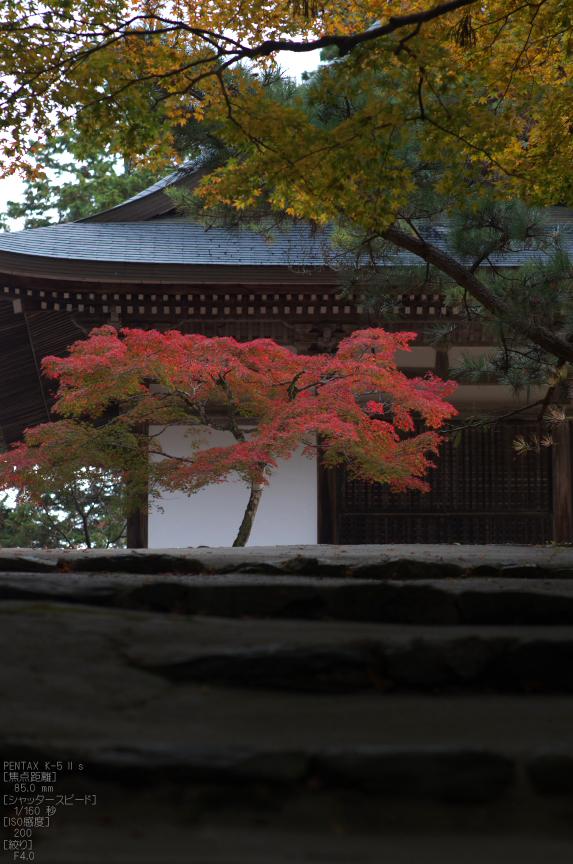 神護寺_紅葉2012_yaotomi_52s.jpg