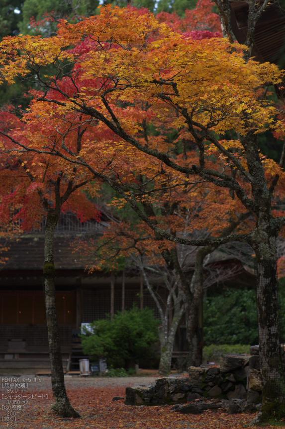神護寺_紅葉2012_yaotomi_56s.jpg