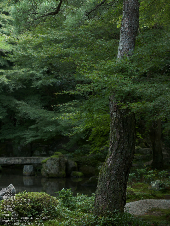 蓮花寺_Panasonic,GX7_2013yaotomi_12s.jpg