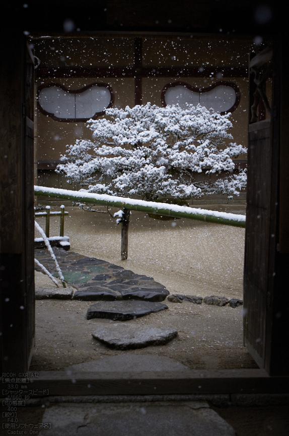 http://www.yaotomi.co.jp/blog/walk/%E8%A9%A9%E4%BB%99%E5%A0%82_%E9%9B%AA%E6%99%AF_2013yaotomi_21s.jpg