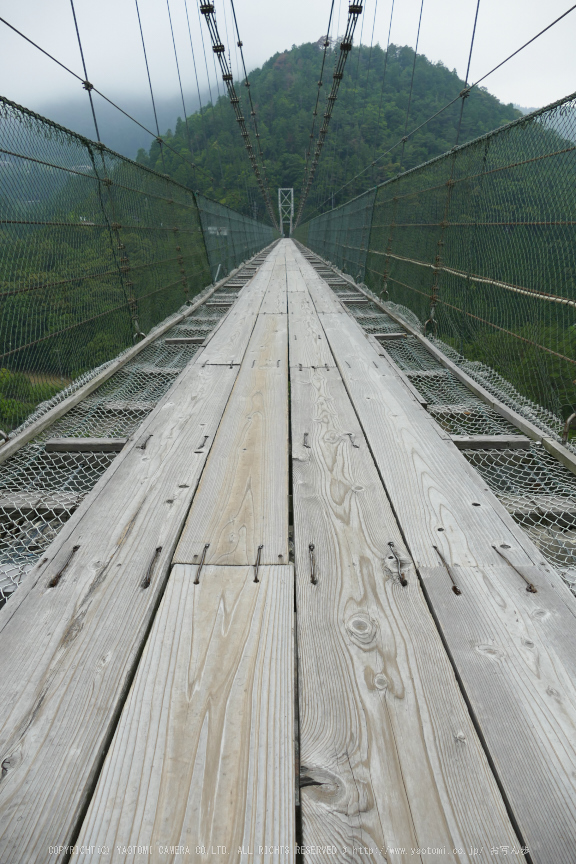 谷瀬の吊橋,初夏(FZ1000,P1000181_F4.5_9.12mm)2014yaotomi_.jpg
