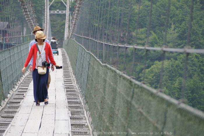 谷瀬の吊橋,初夏(FZ1000,P1000202,F4,100.06mm)2014yaotomi_.jpg