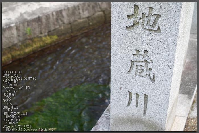 醒ヶ井_梅花藻_2012_yaotomi_お写ん歩_1.jpg