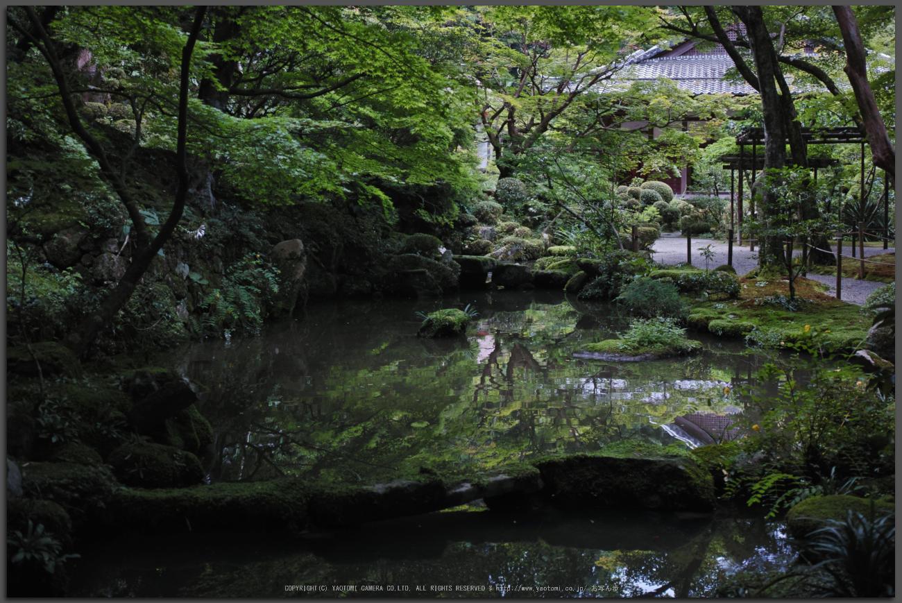 http://www.yaotomi.co.jp/blog/walk/%E9%87%91%E5%89%9B%E8%BC%AA%E5%AF%BA%2CDP2quattro%28SDIM0315%2CF3.2%292014yaotomi_Top.jpg