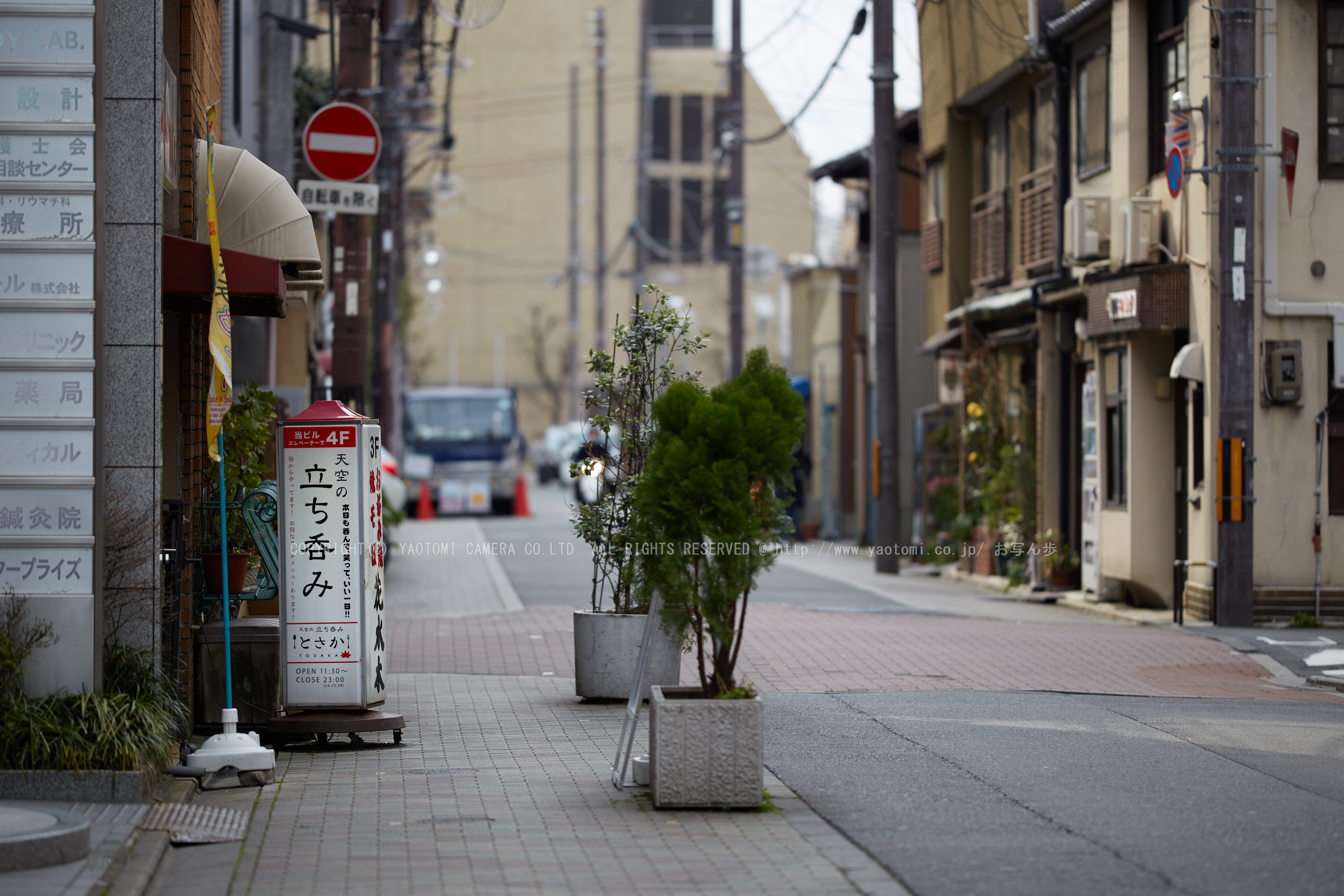 http://www.yaotomi.co.jp/blog/walk/%E9%95%B7%E5%BE%B3%E5%AF%BA%E3%81%8A%E3%81%8B%E3%82%81%E6%A1%9C_IMG_7030_F%2C2017yaotomi.jpg