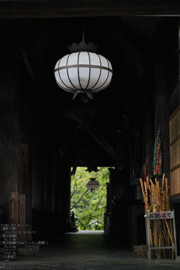 長谷寺の紫陽花_2013yaotomi_26s.jpg