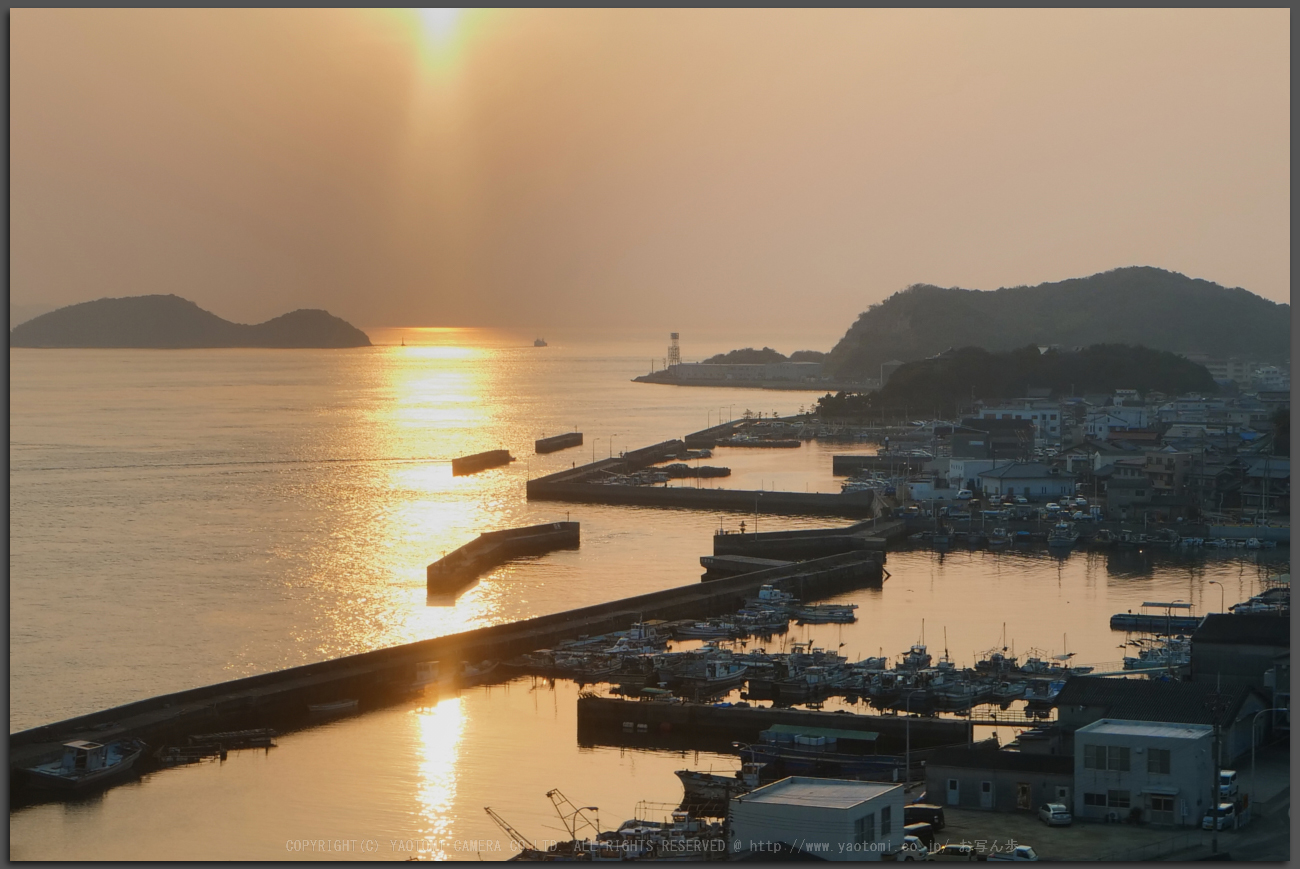 http://www.yaotomi.co.jp/blog/walk/%E9%AB%98%E6%9D%BE%E7%B4%80%E8%A1%8C%2CLumix%2CGH5_PH5_3096pss%2C2017yaotomi_T.jpg