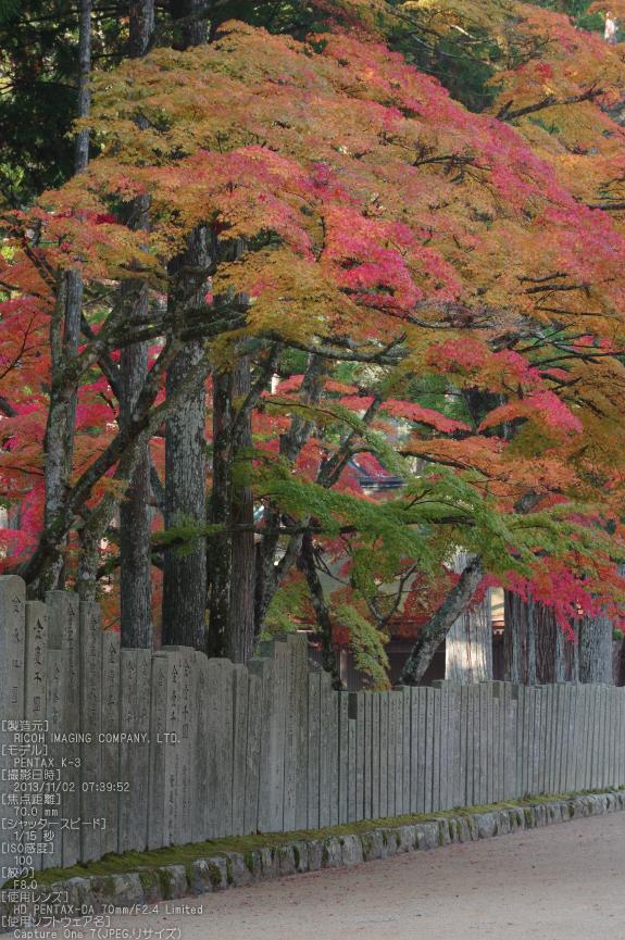 高野山,紅葉(PENTAX-K3)_2013yaotomi_23s.jpg