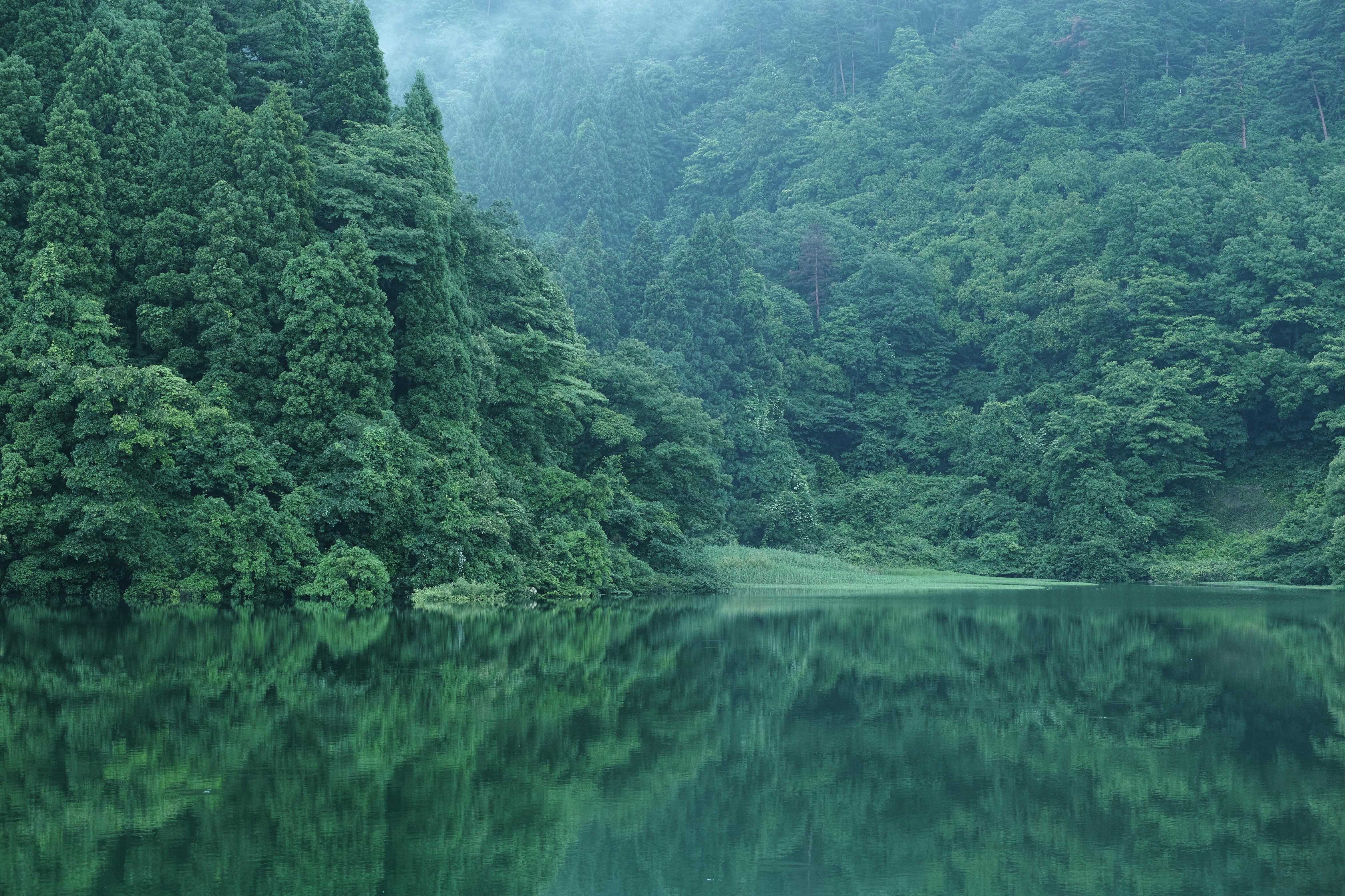 http://www.yaotomi.co.jp/blog/walk/%E9%B3%A5%E5%8F%96%E7%9C%8C%E9%81%9336%E5%8F%B7%E7%B7%9A%E6%98%8E%E9%96%93_%E8%B2%AF%E6%B0%B4%E6%B1%A0_2013yaotomi_1f.jpg