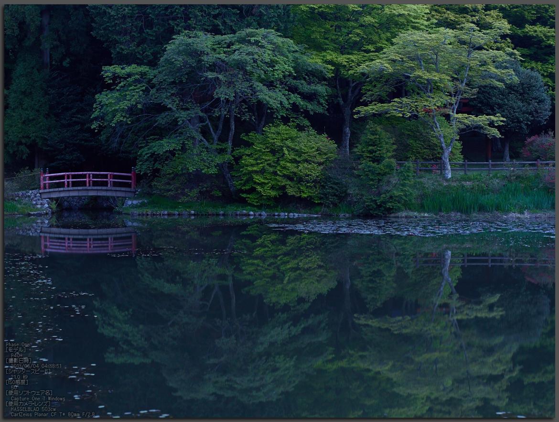 http://www.yaotomi.co.jp/blog/walk/%E9%B3%A5%E8%A6%8B%E5%B1%B1%E3%81%AE%E3%83%84%E3%83%84%E3%82%B8_2013yaotomi_1st.jpg