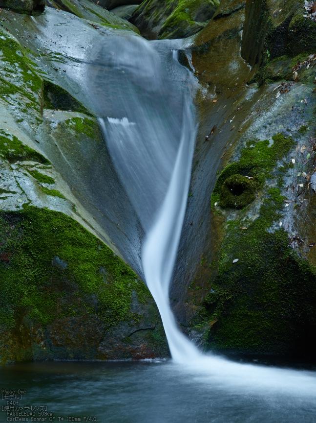 龍鎮の滝の新緑_2013yaotomi_6s.jpg