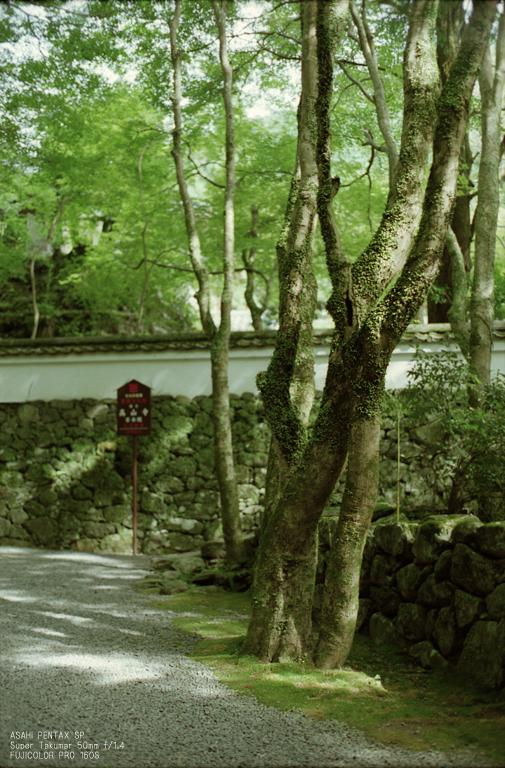 201010_高山寺_11.jpg