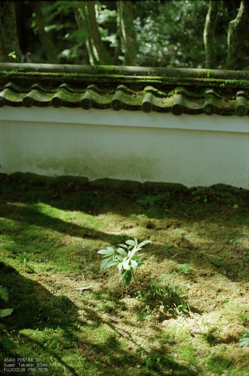 201010_高山寺_3.jpg