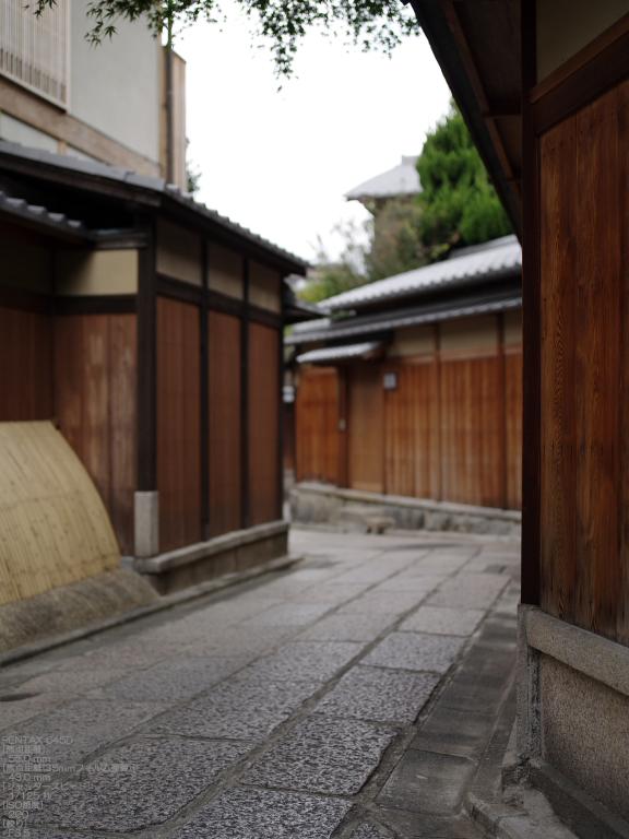 2010_石塀小径・秋_645D_13.jpg