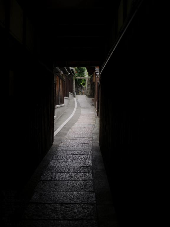 2010_石塀小径・秋_645D_30.jpg
