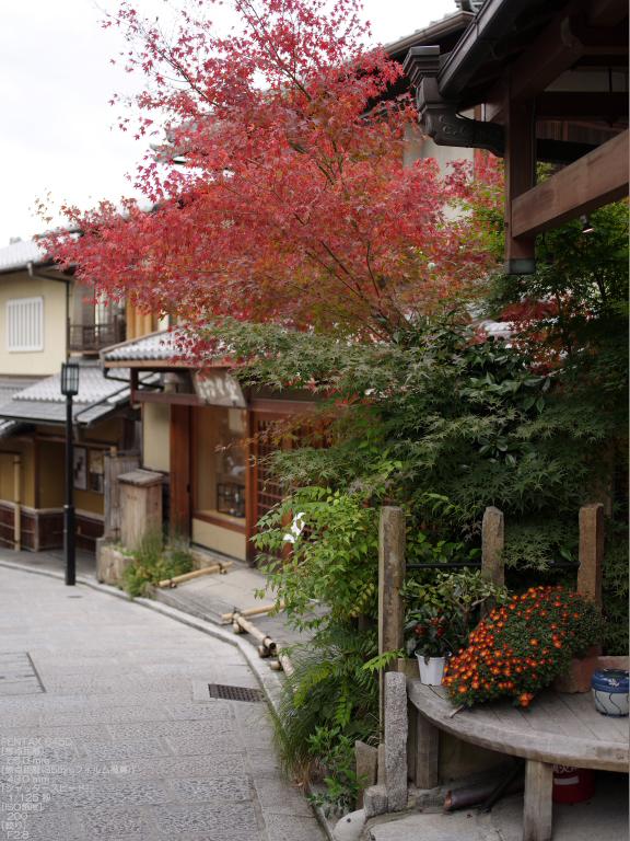 2010_石塀小径・秋_645D_4.jpg