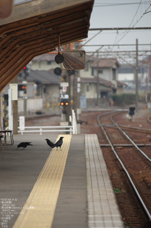2010_2_三岐鉄道off_7.jpg