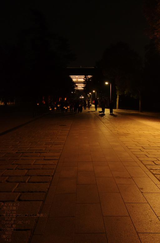 2011_なら瑠璃絵_10.jpg