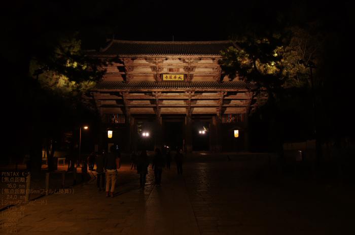 2011_なら瑠璃絵_11.jpg