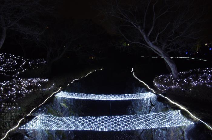 2011_なら瑠璃絵_17.jpg
