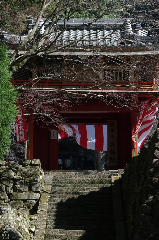 2011_4_三多気・桜_14.jpg