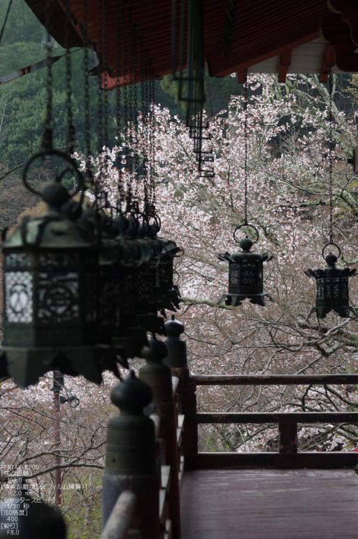 2011_4_談山神社・桜_8.jpg